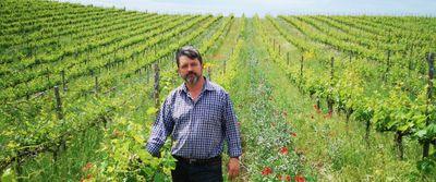 Kamara Winery