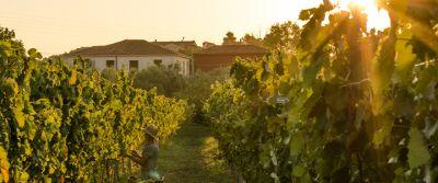 Grampsas Winery