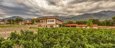 Kamkoutis Vineyards